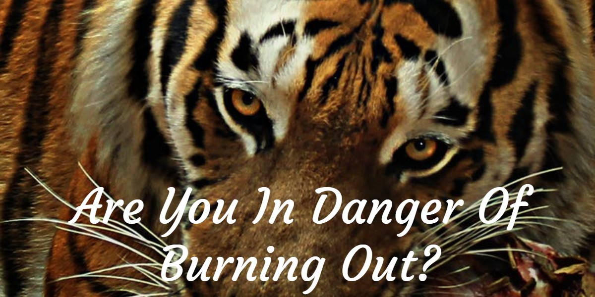 Are you in danger of burning out?