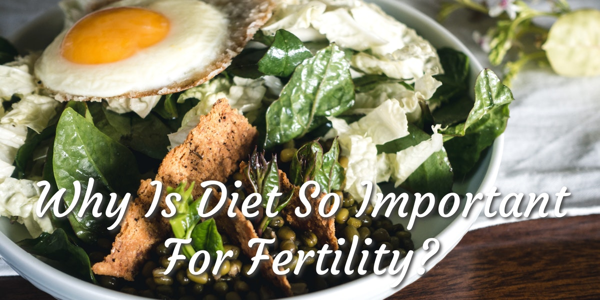 Why Is Diet So Important For Fertility?